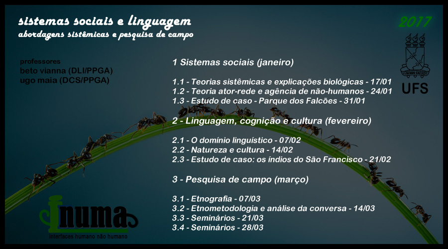 curso sistemas sociais 02.jpg